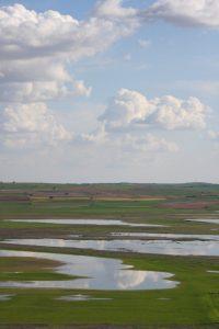 Lagunas de El Hito 2 (FILEminimizer)