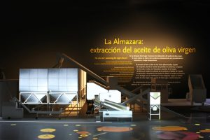 museo-representacion-con-mapping-del-proceso-de-elaboracion-en-una-almazara-fileminimizer