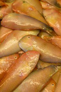 Mahon. Mercat des Peix (1) (FILEminimizer)