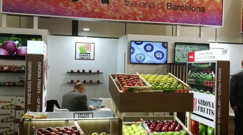 Girona Fruits
