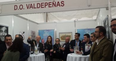 DO Valdepeñas