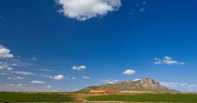 Campaña de promoción y de estímulo al consumo de la Ruta del Vino La Manchuela